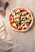 An unbaked Pizza Margherita