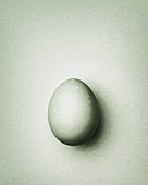 Light gray-green Easter egg on a gray-green background