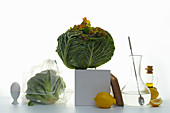 Still life with savoy cabbage, broccoli and lemons