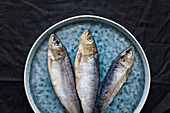 Whole salted herrings on gray plate
