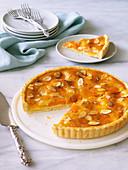 Apricot tart with frangipane filling