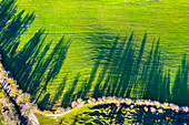 Farmland, aerial view