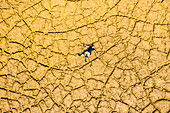 Man on cracked land, aerial view