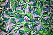 Inorganic and metal salts, polarised light micrograph