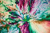 Photographic chemicals, polarised light micrograph