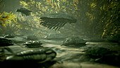 Trilobites in Palaeozoic sea, illustration