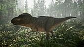 T-rex dinosaur, illustration