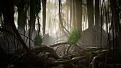 Devonian forest, illustration