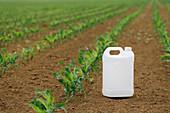 Pesticides, conceptual image