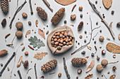 Shelled hazelnuts in burlap sack