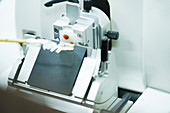 Cut tissue section on rotary microtome