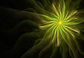Space flower, conceptual illustration