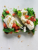 Toast with mozzarella, tomato and basil