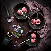 Damson Icecream in three bowls