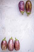 Five aubergines