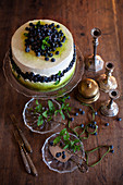 Blueberry cake with cream and mint on a cake stand