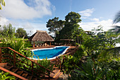 The pool at Lapas Rojas Eco Lodge, Osa peninsula, Costa Rica, Central America