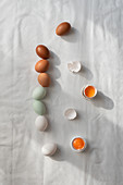 Verschiedenfarbige rohe Eier in einer Reihe