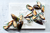 Raw green lipped mussels on a marble board