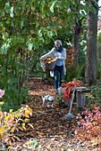 Buntes Herbstlaub auf schattigem Weg zwischen Bäumen,  Frau trägt Korb mit Blättern, Laubrechen an Holzbank, Hund Zula