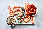 Assortment of various raw seafood - shrimps, kiwi mussels, squid and crawfish