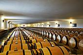 Barriquekeller, Mouton-Rothschild, Bordeaux, Frankreich