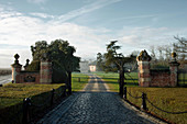 Driveway to Chateau Giscours, Margaux, Bordeaux, France