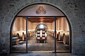 Barrique cellar, Château Lafaurie Peyraguey, Sauternes, Bommes, France