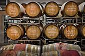 Barrique cellar, Birgitt Braunstein vineyard, Burgenland, Austria