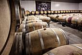 Barrique cellar in the Quinta Plansel vineyard, Alentejo, Portugal