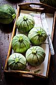 Runde Zucchini auf Tablett