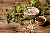 Brewing ingredients - Fresh green hop cones, wheat grain and red fermented malt in ceramic bowls