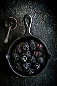 Blackberries on a black background