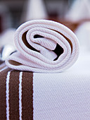 Rolled up cloth napkin