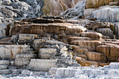 Travertine formations, Yellowstone National Park, USA