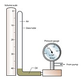 Boyle's law apparatus, illustration