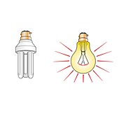 Fluorescent and incandescent light bulbs, illustration