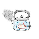Convection currents in a kettle, illustration