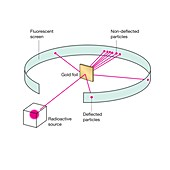 Rutherford scattering experiment, illustration