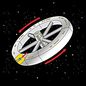 Spinning spacecraft simulating gravity, illustration