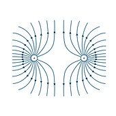 Electric field lines, illustration