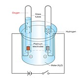 Electrolysis of water, illustration