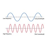 Wavelength and frequency, illustration