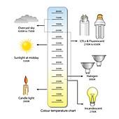 Colour temperature spectrum, illustration