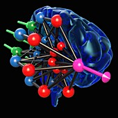 Brain with neural network, illustration