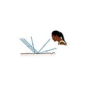 Diffuse reflection, illustration
