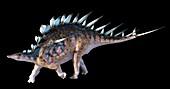 Artwork of the dinosaur kentrosaurus