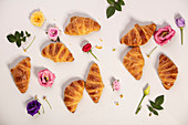 Mini croissants and flowers on white background
