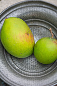 Two green mango fruits