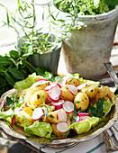 Potato salad with tarragon and parsley dressing